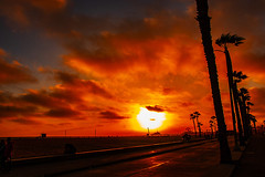 01 (morgan@morgangenser.com) Tags: sunset red orangeyellow blue pretty cloud silhouette sun evening dusk palmtrees bikepath sand beach santamonica pacificpalisades beautiful black dark cement amazing gorgeous inawe ca