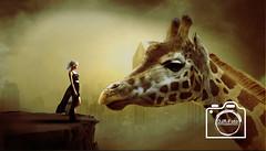 Giraffen girl (DJR-FOTO) Tags: djr djrfoto manipulation sun himmel sky outdoors artwork animals eos colours dusk outside affinityphoto girl