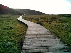 Camiño (borneirana) Tags: path way camino paseo landscape nature playa beach