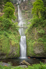 Multnomah (writing with light 2422 (Not Pro)) Tags: multnomahfalls oregon usa waterfall bensonfootbridge vertical richborder sonya7 darncrowdedonsaturdays serene