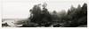 years in the mist (chickentender™ (Eyewanders Foto)) Tags: 50mm ice kalalochlodge olympicnationalpark p30alpha bw beach blackandwhite composite eyewandersfoto ferraniap30 film filmferrania inmydreams kalalochcreek ocean pan pano panochromatic pentaxmx rainforest shootfilmaskquestionslater time twoframestitch washingtoncoast water