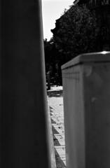 le soleil au midi (hugobny) Tags: caffenol cl semistand strasbourg smc street blackwhite film f18 55mm pentax pentaxp30 fomapan 100iso classic p30 pentaxlens processed argentique analogue analog analogique