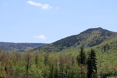 Chittenden, Vermont - 5/23/18 (myvreni) Tags: vermont spring nature outdoors