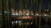 Green Curtain (Friedels Foto Freuden) Tags: lüneburg nacht alter hafen