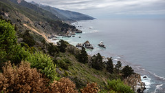 20180524 5DIV California Trip 119 (James Scott S) Tags: canon 5div 2470 1740 travel wanderlust vacation ca big sur winery tour grape line grapevine dutch town mountains landscape lr bigsur california unitedstates us