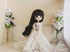 Wedding Dress (Mundo Ara) Tags: wedding dress midori pullip chloi doll groove brid bridal retrato