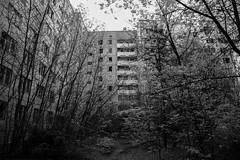 A overgrown courtyard in the abandoned city of Pripyat (Chernobyl Exclusion Zone) (jussitoivanen) Tags: blackwhite pripyat chernobyl canon canon6d urban urbanphoto urbanphotography urbanexplorer urbannature monochrome monochromatic urbex city blancnoir blackandwhite blackwhitephotos noiretblanc