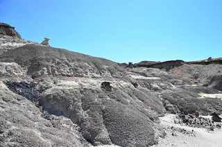 Bisti/De-Na-Zin Wilderness 84