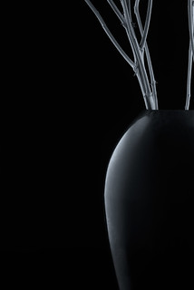 Vase Profile With Stems