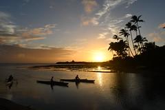 Hawaiian Canoers at Sunset (trailwalker52) Tags: hawaii oahu sunset canoe palm tree dusk canoeing canoer hawaiian beautiful peaceful calm tranquil hawaiilife hawaiianlife