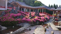 Modern Landscape Garden ,Kyoto - Art Work of Mirei SHIGEMORI (maco-nonch★R) Tags: japanischer japanesephotographer japon japonés japan japanese temple tempel mireishigemori shigemorimirei matsunoo taisha kioto kyoto buddhism landscapegarden modern 日本 jardín