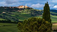 pienza-027 (bonacherajf) Tags: italia italie valdorcia pienza toscane tuscany