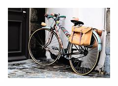 """""""Qu'Importe d'Etre à Plat Tant Que Le Fil D'Art Est Là."""" (The Blue Water Lily's Company) Tags: fdrouet street rue vélo bicycle nikon d90 laine wool"""