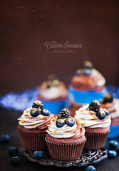 _MG_2888-1 (Katty-S) Tags: food holiday stock cupcake cake muffins muffin sweet dessert delicious chocolate cream berry blueberry foodporn foodphotography foodstyle