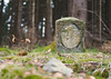 Es könnte 24 sein (michaelmueller410) Tags: stein stone grenzstein landmark border 24 nummer number painted colour color farbe wald bäume trees spruce fichten gras