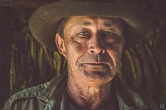 Juan (Konstantinos Dolkas) Tags: ifttt 500px cuba vinales horse horses riding mountains nature portrait man cigar aquaticos