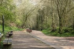 Silkin Way (Baldyal) Tags: wood walk railway station telford shropshire