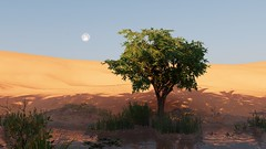 Oasis (Nocha_Productions) Tags: ubisoft assassin assassinscdreedorigins assassinscreed origins uplay egypt oasis tree desert moon sky water grass shadow art screenshot screenshots cinematography consoles videogames gaming gamingscreenshot game games gallery gamingart gamingpicture pics pic pc picture photography photo productions nochaproductions nocha ubisoftmontréal anvilnext playstation playstation4 ps4 ps4pro xboxone xbox xboxonex microsoftwindows action adventure rpg creed