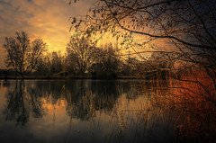 Carved from nature (10000 wishes) Tags: lake sunset naturephotography reflections water reeds trees beauty calmness scenic beautiful