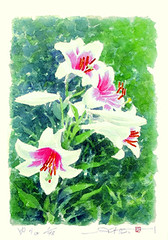 Trumpet lily (Japanese Flower and Bird Art) Tags: flower trumpet lily lilium longiflorum liliaceae soho ikegami modern screenprint print japan japanese art readercollection
