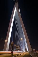 Erasmus Bridge Rotterdam (mesocyclone70) Tags: bridge night lights rotterdam holland netherlands longexposure traffic black city connection