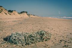 Una maraña de cuerdas (Alicia Clerencia) Tags: paisaje landscape mar sea playa beach storm temporal camino way green verde cuerda rope duna dune