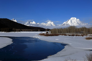 Ducks and Snake River, Teton County, Wyoming