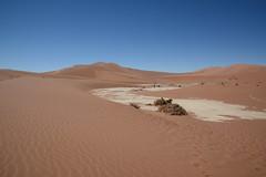 Дорога в Дэдвлей (Oleg Nomad) Tags: африка намибия сафари пустыня песок дюна дэдвлей соссусфлей природа жара africa namibia desert dune sand deadvlei sossusvlei nature travel hot
