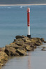 Vertical for the birds (OzzRod (on the road again)) Tags: pentax k1 hdpentaxdfa150450mmf4556 vertical pole navigation bird groyne breakwater sea currarong dailyinapril2018