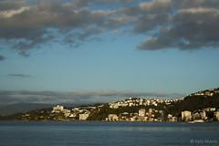 Oriental Bay (kelstar*) Tags: newzealand northisland orientalbay wellington project365 project3652018