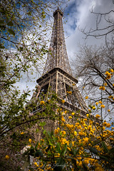 Aperçu (glank27) Tags: eiffel tower paris france architecture europe karl glanville canon eos 5d mk iv ef 1635 f4l city capital french epic landmark centre