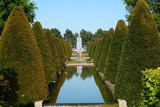 Symmetrical Garden