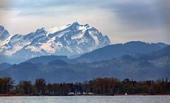 IMG_1447 (radomirmor) Tags: 6d canon mountain lake snow austria tree forest sigma 150600c bodensee