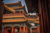 Rooftops of Lama Temple (bodro) Tags: buddhism china gelugschool hdr lamatemple theyonghetemple tibetan yonghelamasery yunnan bluesky crowded monastery realistic rooftops space temple travelphotography