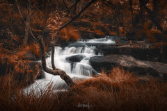 Bucolic scene (after pills) (RuiFAFerreira) Tags: beauty bucolic canon color conceptual efs1018mmf4556isstm exterior landscape longexposure mood portugal red river rocks trees uwa creativeedit fineart waterfall