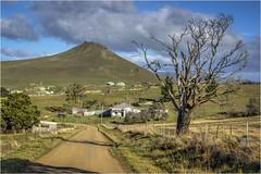 Bonnet Hill (Trains In Tasmania) Tags: australia tasmania bonnethill midlands scene scenery tasmanianscenery tasmaniancountryside hill road lane tree clouds trainsintasmania stevebromley ef35350mm13556lusm canoneos550d pawtellaroad pawtella