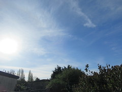 Monday, 23rd, Sunrise is getting earlier and earlier IMG_6884 (tomylees) Tags: essex morning spring april 2018 23rd monday weather blue sunshine