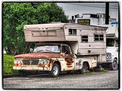 Rusty Dodge (NoJuan) Tags: neglected rusty rust georgetown microfourthirds micro43 mirrorless olympuspenf panasonic35100 dodge dodgetruck americanpickup