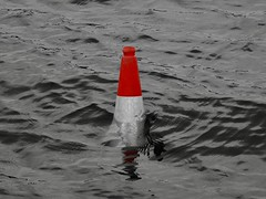(Fiona Sharp) Tags: water warning cone submerged