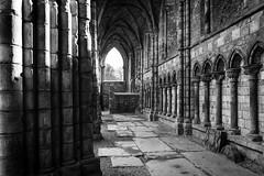 Holyrood Abbey (saavedl) Tags: edimburgo scotland reinounido gb edimburgh uk abbey ruins abandoned church reformation columns architecture lines bw bn blackandwhite monochrome