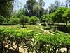 Parc de María Luisa (Sur mon chemin, j'ai rencontré...) Tags: séville andalousie espagne españa parcdemaríaluisa parc parcpublic duchessedemontpensier infantemarialuisa jeanclaudenicolasforestier espècesvégétales expositionibéroaméricainede1929 nature losremedios