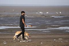 Champion (Rahul Gaywala) Tags: dumas beach sea surat gujarat india candid casual life people action camel plane boy girl