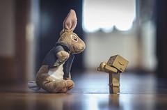 Danbo and the Easter bunny. (Matt_Briston) Tags: robot danbo bunny easter egg chocolate matt cooper nikon d7000