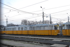 BKV Zrt 1447 (Will Swain) Tags: seen angyalföld kocsiszín budapest 8th january 2018 tram trams light rail railway rails transport travel europe hungary east eastern county country central capital city centre depot yard bkv zrt 1447