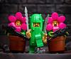 Plants vs Zombies: Ranger Platoon Assemble (jezbags) Tags: plants vs zombies ranger platoon assemble lego legos toy toys plant cactus flowerpot macro macrophotography macrodreams macrolego canon canon80d 80d 100mm closeup upclose minifigures series18