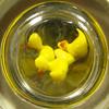 a circle of tiny duckies (muffett68 ☺ heidi ☺) Tags: macromondays circles possibility duckies squaredcircle