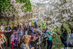 IMGP2803 (hans03) Tags: cosplay wettbewerb marzahn gärten der welt kirschbäume blüte kirschblütenfest 2018