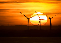 Alternative Sunset (michael.smith86) Tags: windfarm renewable electricity fuelfree turbines generators wind nonpolluting bridlington fraisthorpe east yorkshire contemporary 150600 7dmk2 canon alternative energy sigma