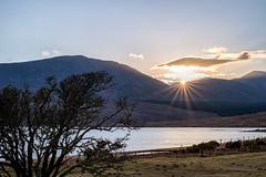 Lough Feenagh sunset (mickreynolds) Tags: comayo furnace ireland lake marcg2018 nx500 newport sheep sunset wildatlanticway loughfeenagh