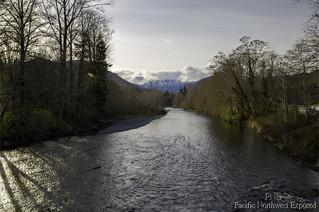 Dosewallips River 8202